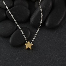 Plated Mini Slider Necklace - star